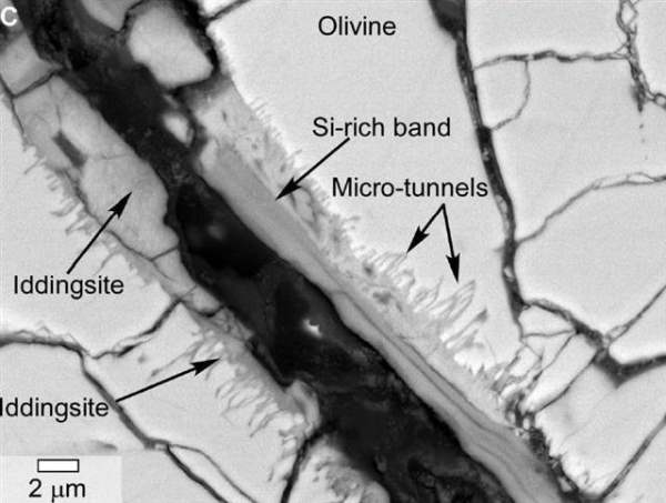 Yamato 000593: This photomicrograph shows bands of minerals inside a meteorite from Mars