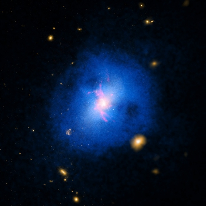 While some galaxies are veritable star nurseries, others went barren years ago. Yet what causes some galaxies to produce new stars while others go silent? That's a good question and now, astronomers may have found the answer. A galaxy cluster known as Abell 2597 was one of about 200 that were studied by a team of astronomers trying to determine why some galaxies are more prolific at making new stars than others. (Photo : NASA/CXC/STSci/DSS/Magellan)