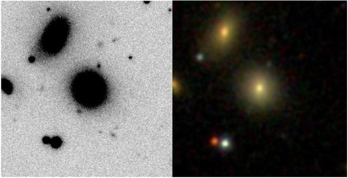 Compact Elliptical Galaxy