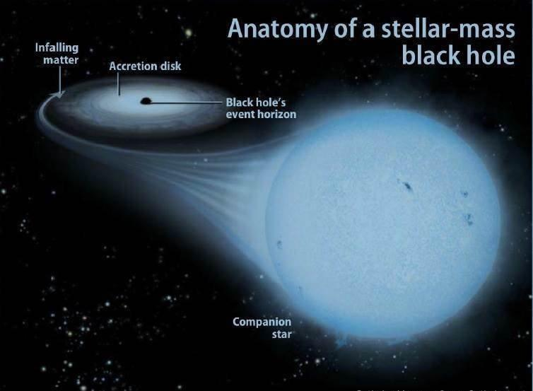 Black Holes Exist: A stellar-mass black hole is the last stage of evolution of a star that once was at least 30 times our Sun's mass