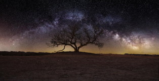 Dark Matter in the Milky Way