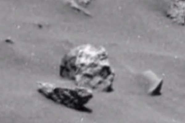 A NASA photograph of what looks like a human skull lying on the surface of Mars could be alien bones, UFO. Or is the story just another hoax?