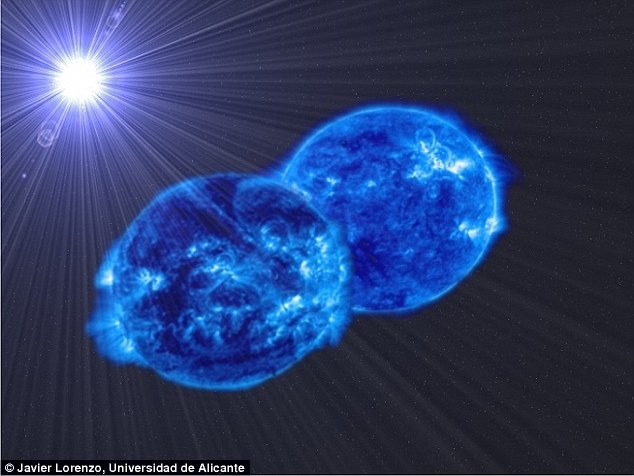 Astronomers have spotted two monster stars about to merge in a stunning event that could reveal, for the first time, how supermassive stars are born (artist's impression pictured)