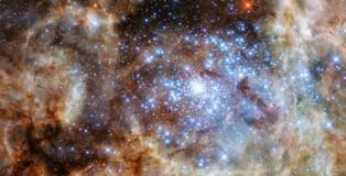 Stars In R136